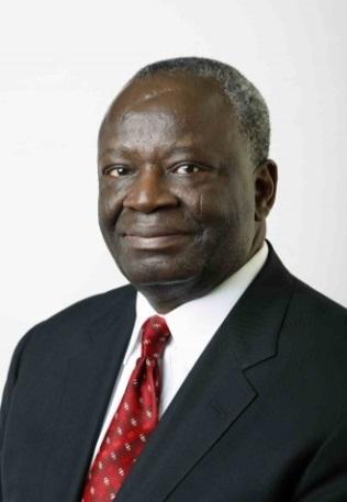 Ambassador Ibrahim Gambari